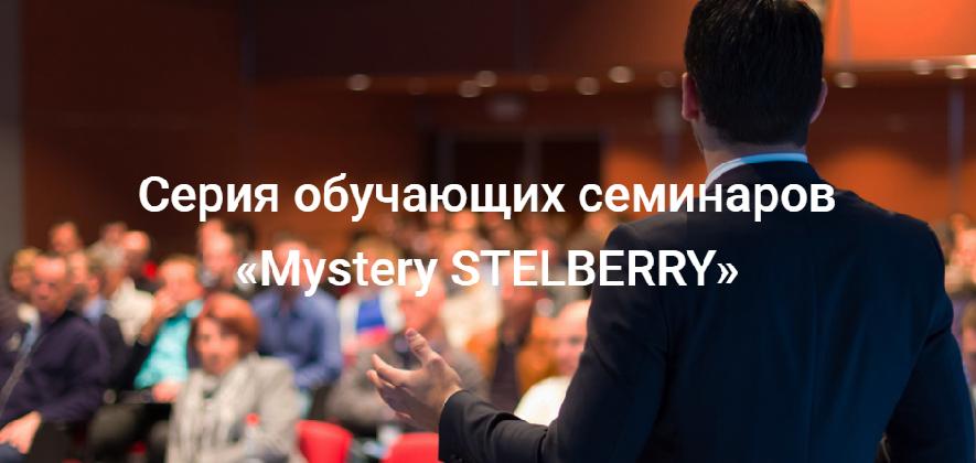 Обучающие семинары «Mystery STELBERRY»